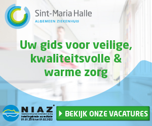 Sint-Maria-Halle Medium Rectangle